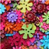 Order  Basics 2 Go Buttons - Flower Brights
